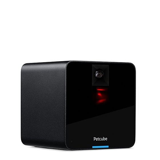 First Generation Petcube Camera For Pets With Hd 720p